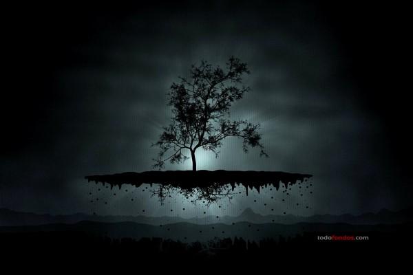Árbol levitando en la oscuridad