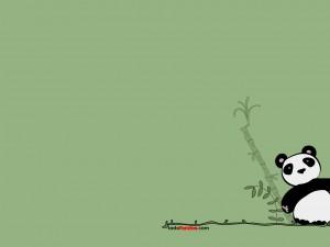 Postal: Oso panda sobre fondo verde