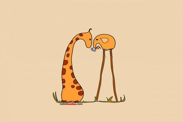 Jirafa y elefante zancudo se ven las caras