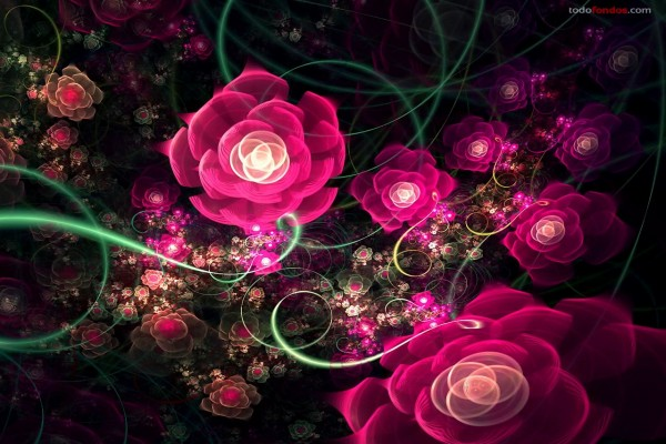 Rosas digitales