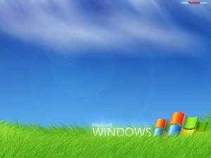 Postal: Microsoft Windows sobre hierba