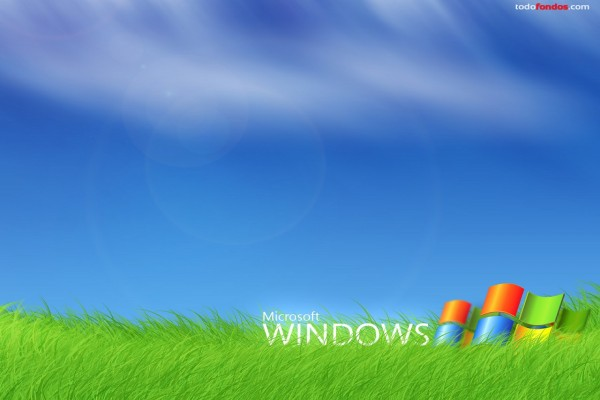 Microsoft Windows sobre hierba