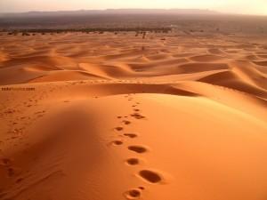 Postal: Desierto del Sáhara (Marruecos)