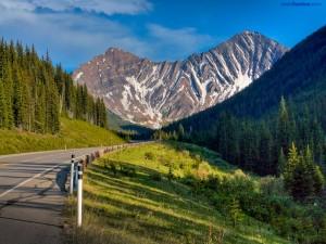 Postal: Montaña cebra (en Kananaskis, Alberta, Canadá)