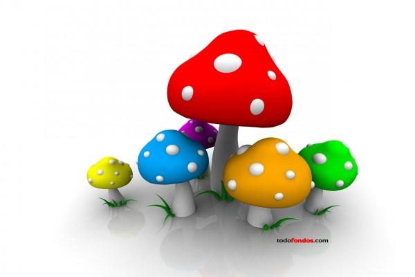 Setas de colores