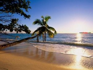 Postal: Playa de la Isla de Silhouette (Seychelles)