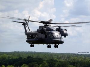 Helicópteros sobrevolando un bosque