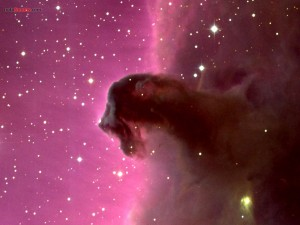 Postal: Nebulosa Cabeza de Caballo (Barnard 33)