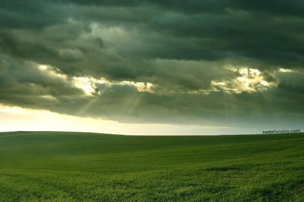 Pradera nublada