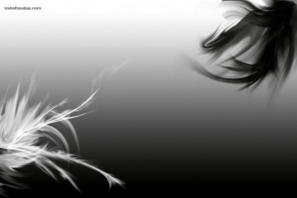 Borrones en blanco y negro