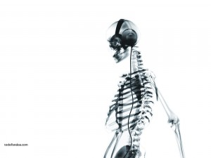 Postal: Música para tus huesos