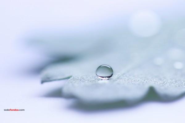 Una gota de agua