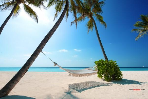 Playa paradisíaca en las Islas Maldivas