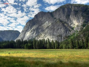 Postal: Praderas en Yosemite Valley (California)