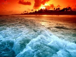 Postal: Puesta de sol en la playa