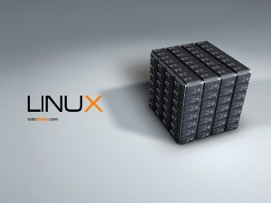 Cubo de procesadores Linux