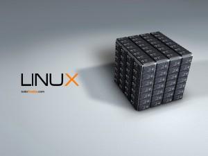 Postal: Cubo de procesadores Linux