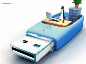 Postal: Pingüino en una memoria USB
