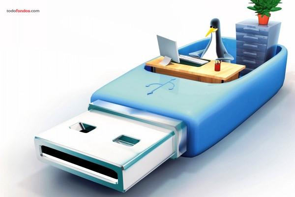 Pingüino en una memoria USB
