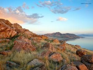 Postal: Isla Antílope, en el Gran Lago Salado, Utah (Estados Unidos)