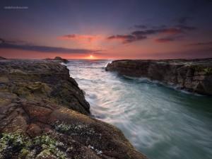 Postal: Playa de Muriwai, en Auckland, Nueva Zelanda