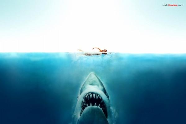 Tiburón (la película)