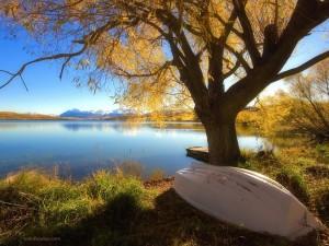 Lago Alexandrina (Nueva Zelanda)