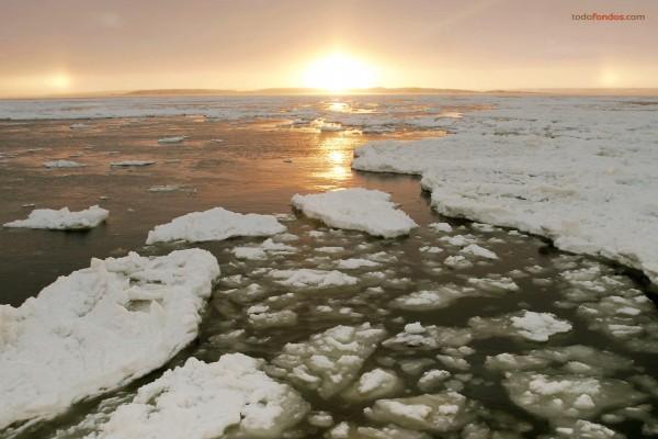Placas de hielo