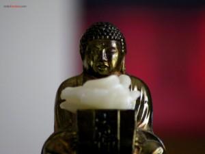Postal: Buda