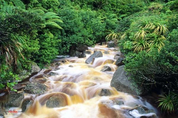 Caídas de agua en el río Karamea (Nueva Zelanda)