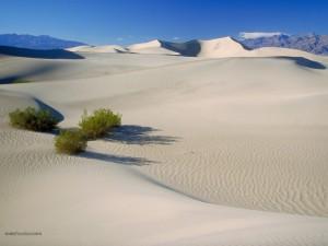 Postal: Valle de la Muerte (California)