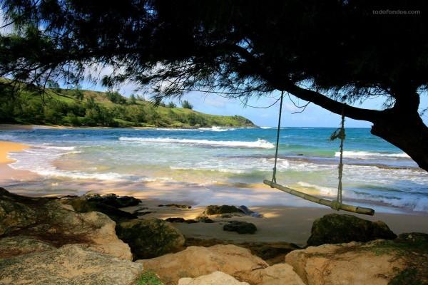 Playa de Moloa'a (Hawaii)