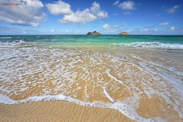 La orilla de la playa