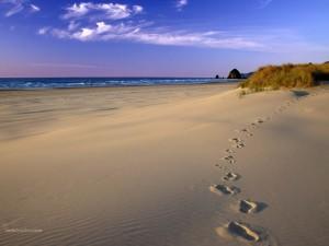 Postal: Pisadas en la playa