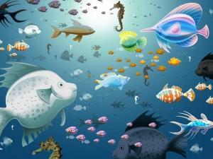 Muchos peces