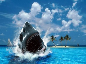 Postal: El ataque del tiburón