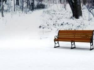 Un banco en la nieve
