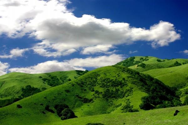 Verdes colinas