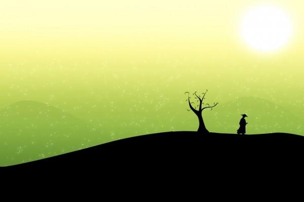 Caminando en soledad