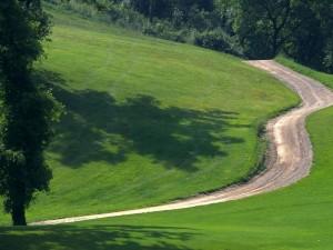 Carretera de tierra atravesando el campo