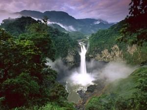 Parque Nacional Yasuní (Ecuador)