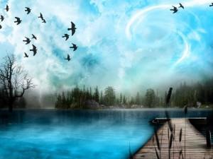 Postal: Pájaros sobre un cielo revuelto