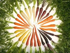 Postal: Zanahorias de colores