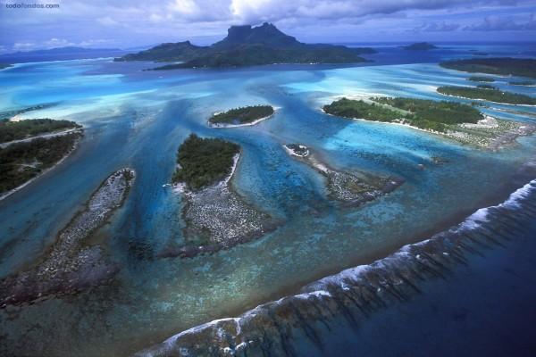 Dientes de coral de la laguna de Bora Bora, Polinesia francesa