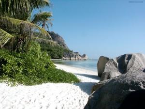 Postal: Playa con vegetación y arena blanca