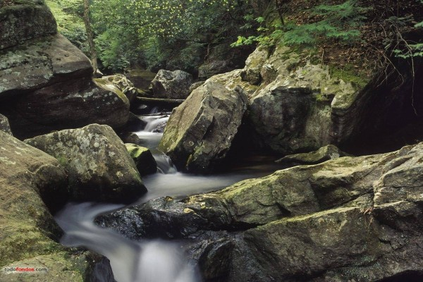 Cumberland Falls State Resort Park (Corbin, Kentucky)