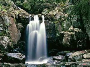 Postal: Parque nacional de Shenandoah (Virginia)