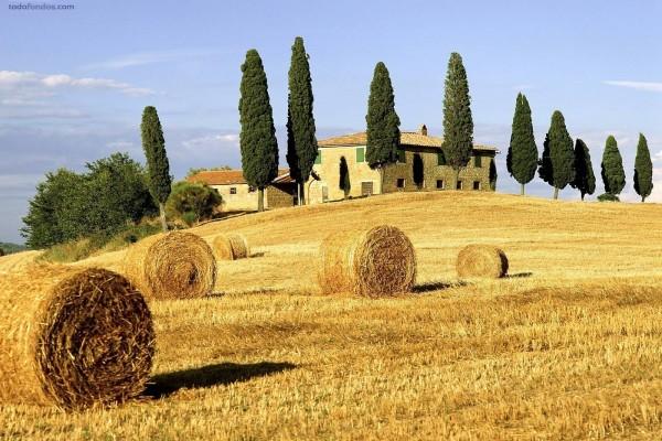 Paisaje de la Toscana (Italia)