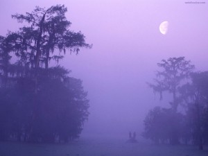 Postal: Pescando en la niebla