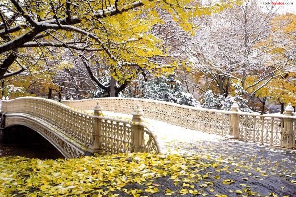 Otoño en Central Park, Nueva York